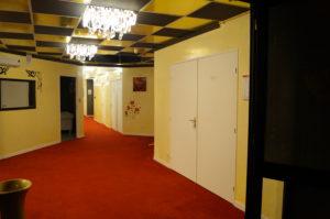 lac des cygnes - hall et couloirs6
